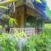 White Rice Mai Châu Valley Retreat